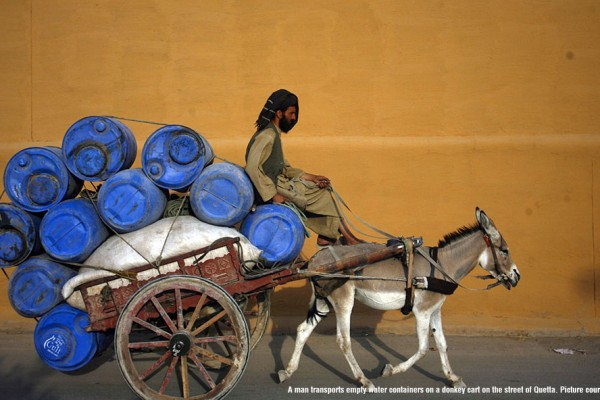 A man transports empty water containers on a donkey cart on the street of Quetta